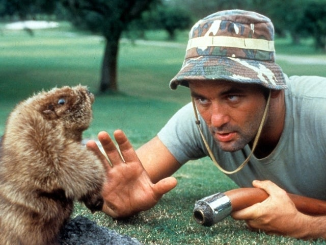 Bill Murray's Brother Ed, Inspiration Behind 'Caddyshack', Dies