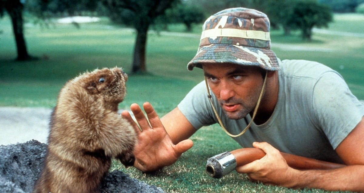 bill-murray-caddyshack_getty-Archive Photos : Stringer