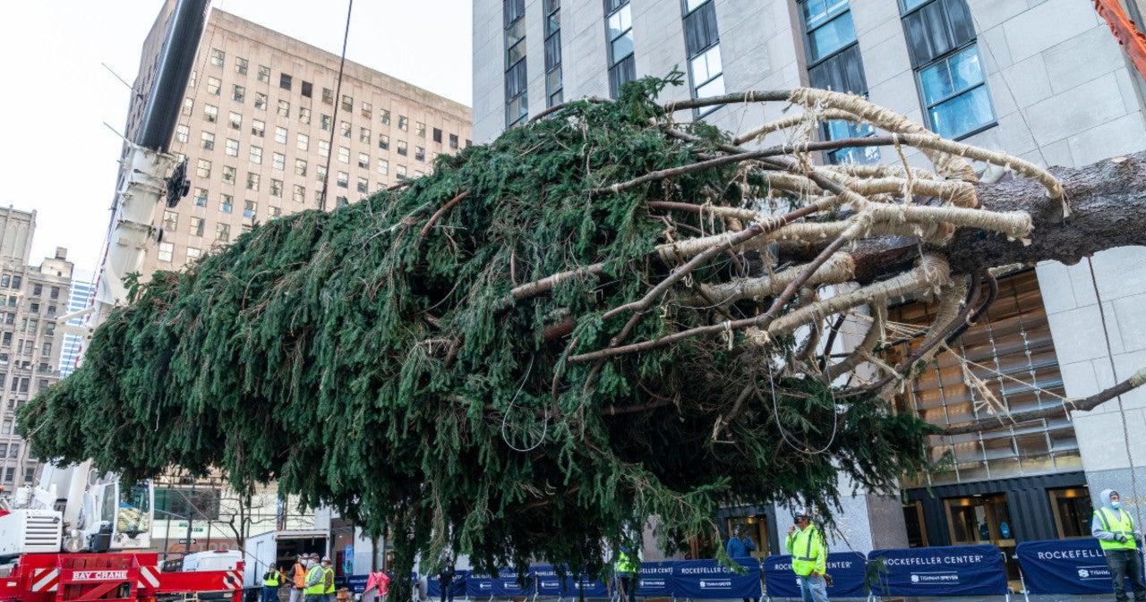 qvhlvysc3aevom https popculture com trending news charlie brown rockefeller center christmas tree draws comparisons holiday special fir
