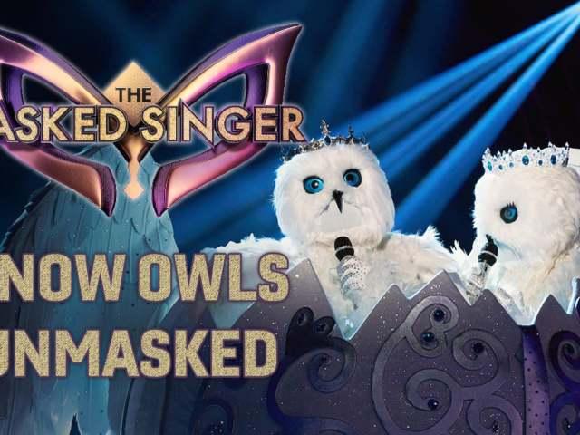 The Masked Singer Season 4, Episode 7 - Snow Owls Unmasked
