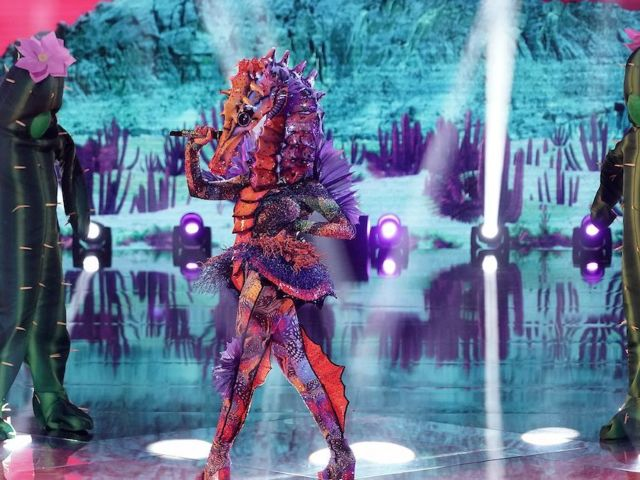 The Masked Singer' Unmasked Seahorse, and It's a Major Pop Star
