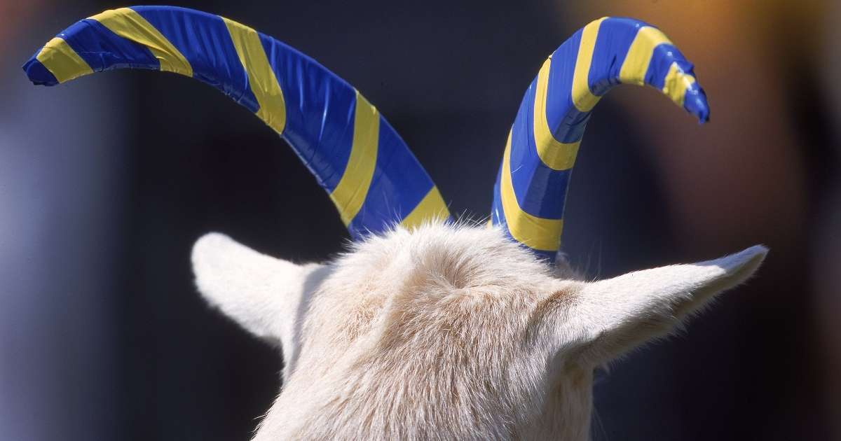 Bill 33 Navy football goat mascot dead 14