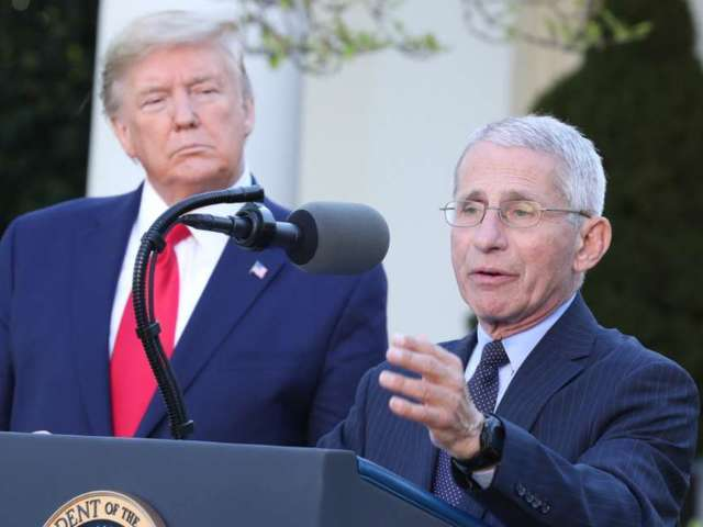 Donald Trump Slams COVID-19 Death Toll, Gets Blasted by Dr. Anthony Fauci: 'The Deaths Are Real'