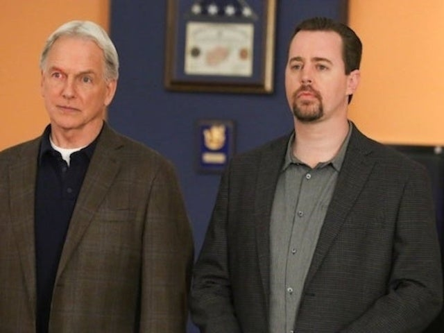 'NCIS': Hawaii Spinoff in Works at CBS