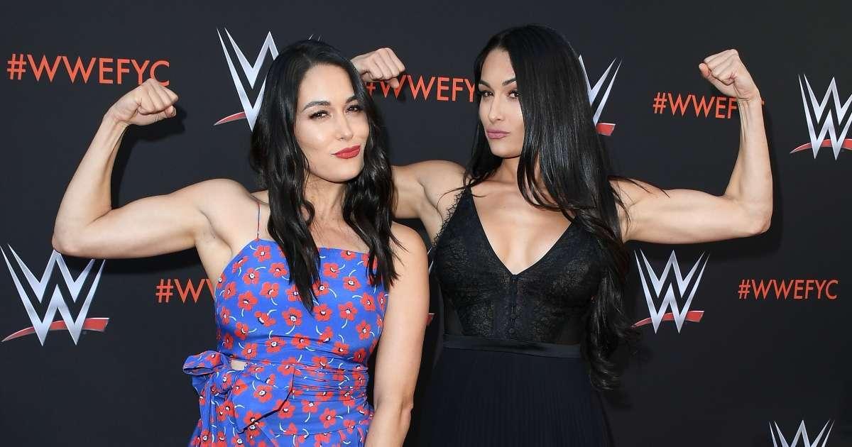 Nikki Brie Bella tease possible return WWE