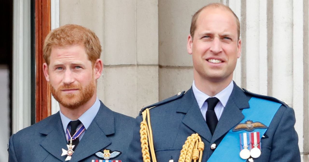 Princess Diana's Voice Coach Weighs in on Prince Harry's Rift With Prince William (Exclusive).jpg
