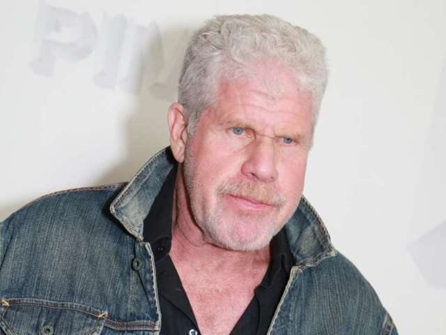 'Sons of Anarchy' Star Ron Perlman Boycotts Georgia Amidst Voting Law Controversy
