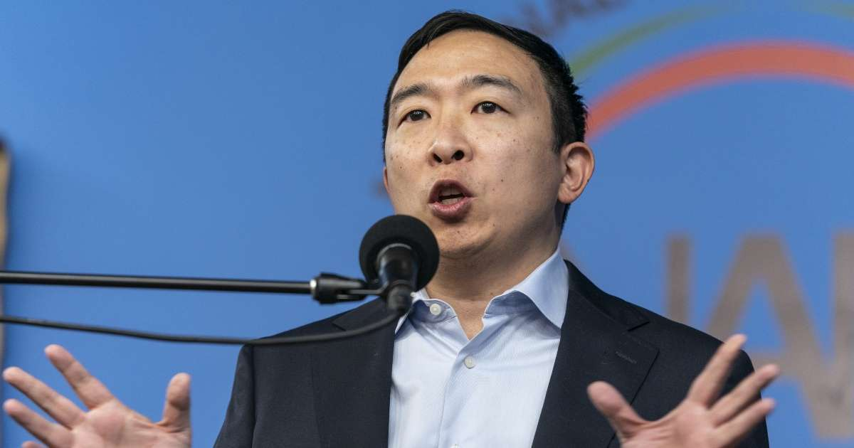 Andrew Yang Blasts New York Knicks New Yorkers arent happy