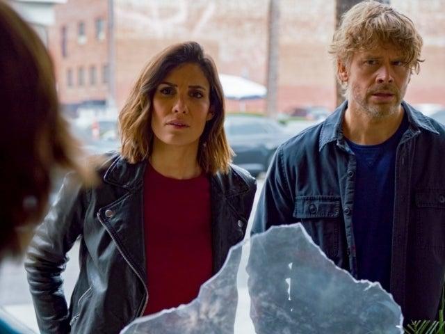 'NCIS: Los Angeles' Stars Daniela Ruah and Eric Christian Olsen Endorse 'Hawaii' Spinoff