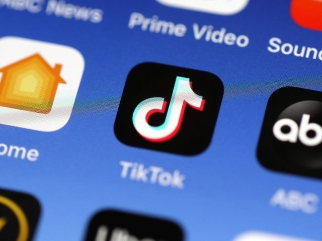 Netflix Welcomes TikTok to Content Mix With New Series