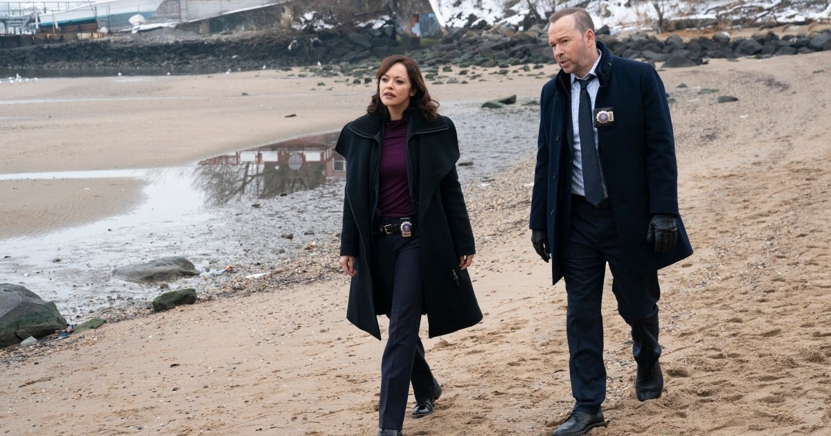 blue bloods more than meets the eye cbs