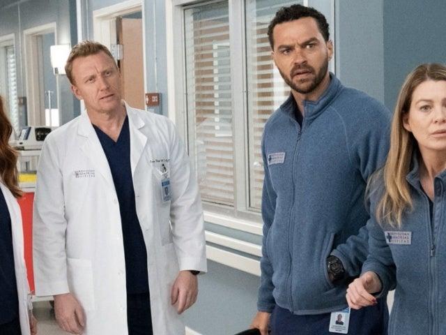 'Grey's Anatomy' and 'Station 19' Ratings Hit Lows Despite Final Season Rumors