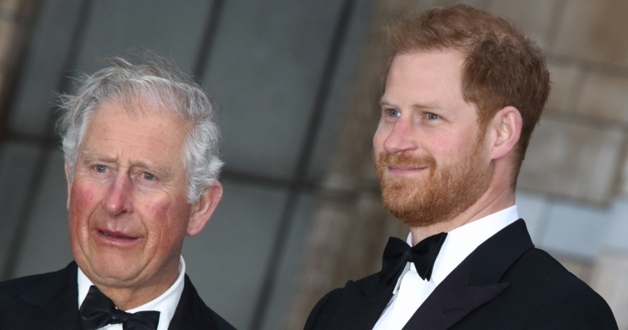 Princess Diana's Voice Coach Weighs in on Prince Harry's Estrangement From Prince Charles.jpg