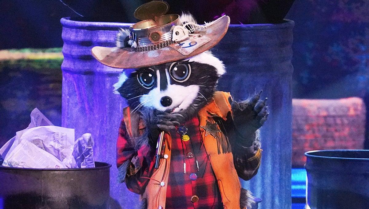 raccoon-masked-singer