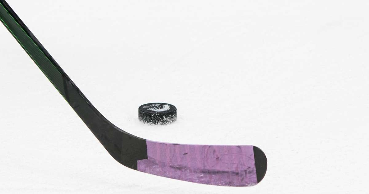 Russian hockey player dead 19 after hit puck