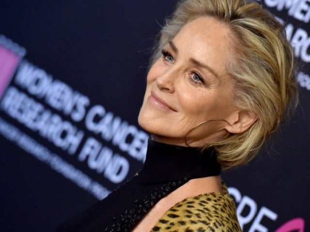 Sharon Stone Weighs in on Meryl Streep, and the Oscar Winner's Fans Don't Like What She Had to Say