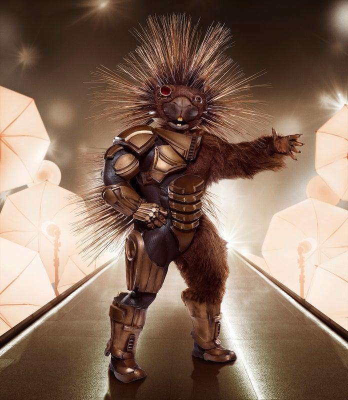 The Masked Singer Porcupine