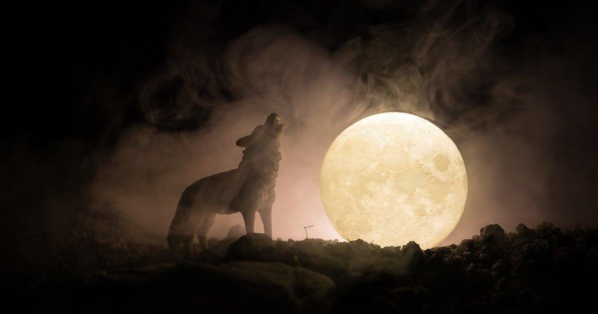 werewolf-getty