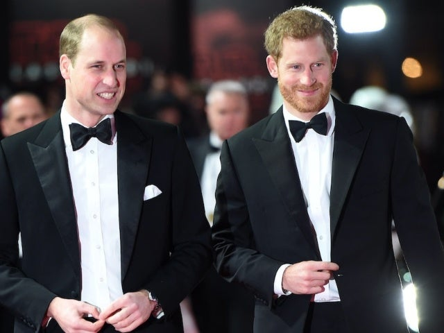 Why Prince Harry and Prince William 'Wont Spend Much Time Together' During Harry's Upcoming Visit