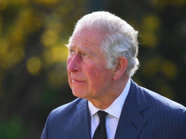 Prince Charles Reportedly Makes Major Decision on Prince Andrew's Royal Status Amid Sexual Abuse Allegations