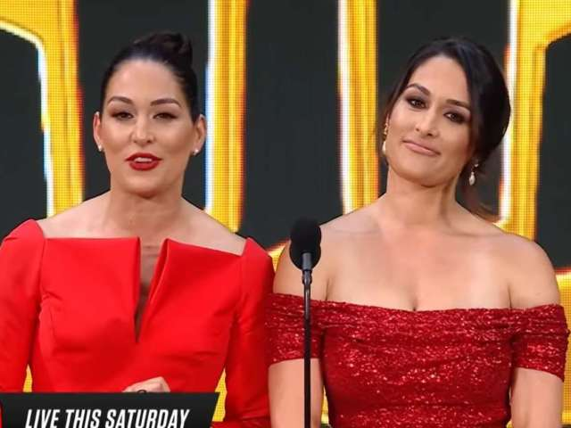 Nikki and Brie Bella's Fans Rejoice as They Join the WWE Hall of Fame