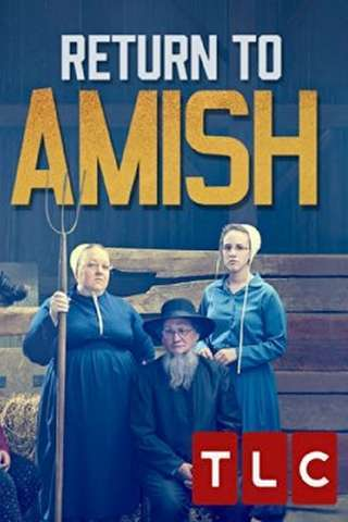 return_to_amish_default