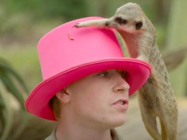 Robert Irwin Devises Adorably 'Scientific' Gender Reveal for Sister Bindi in 'Crikey! It's the Irwins' Exclusive Sneak Peek