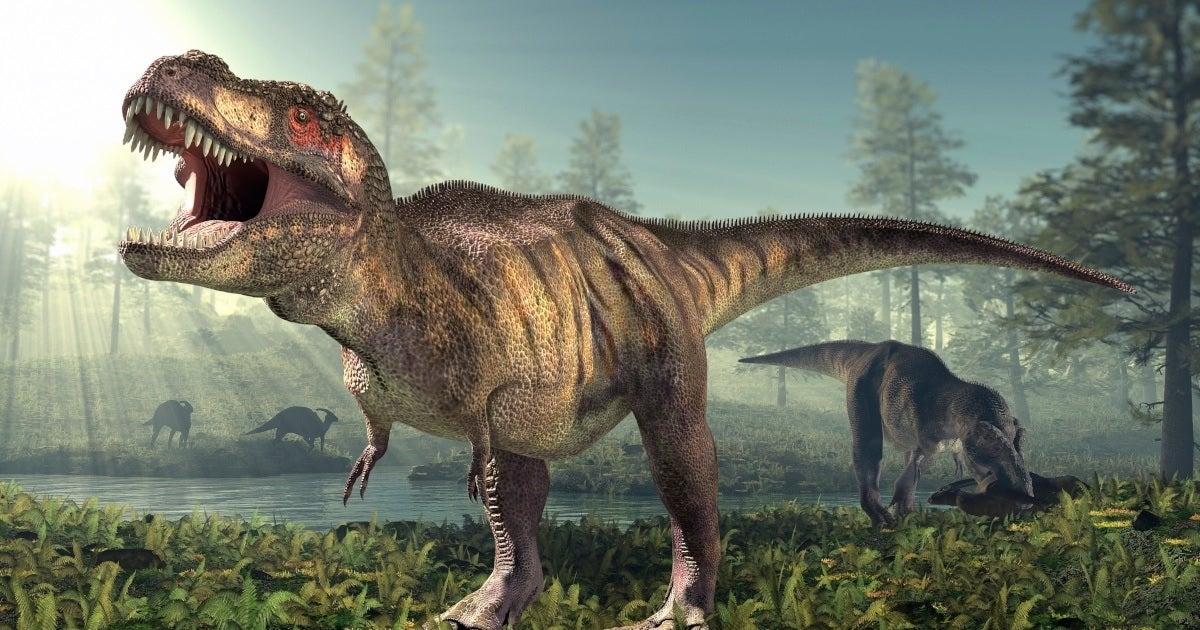 Tyrannosaurus rex dinosaur getty images