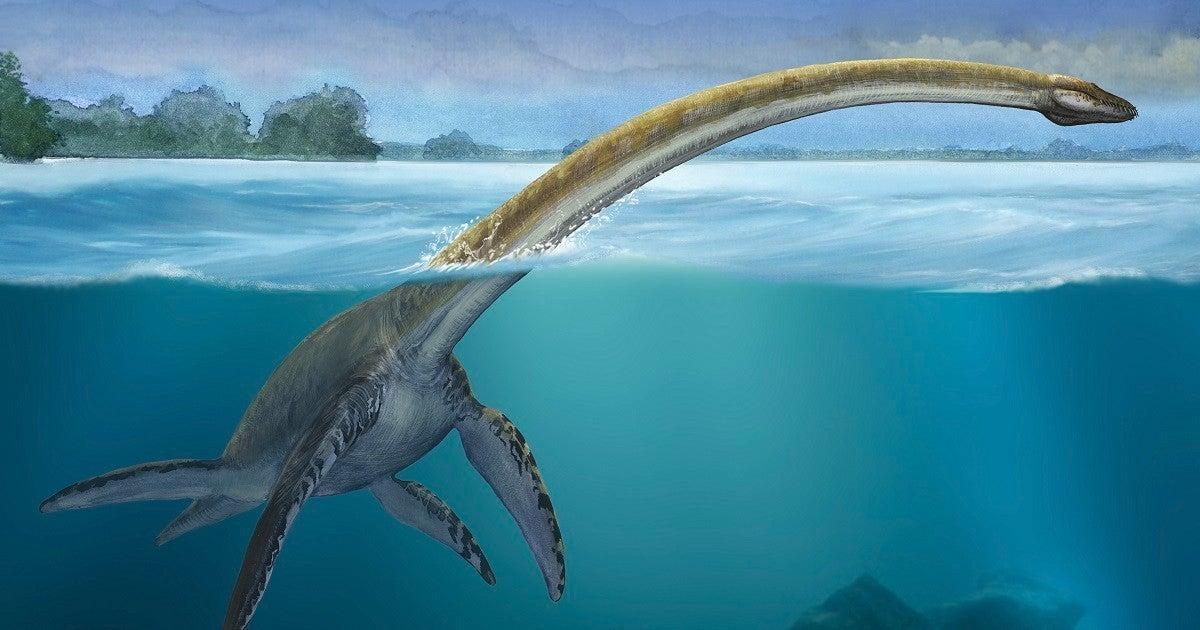 plesiosaur-getty