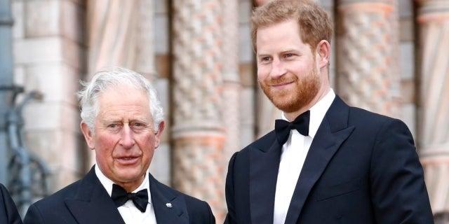 Prince Charles (Charles, Prince of Wales)