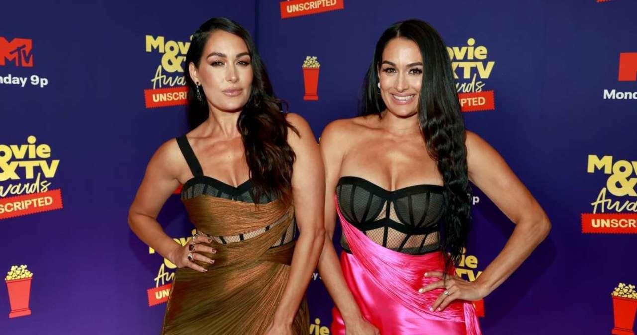Nikki and Brie Bella Reveal Major Update on Their Return to WWE.jpg