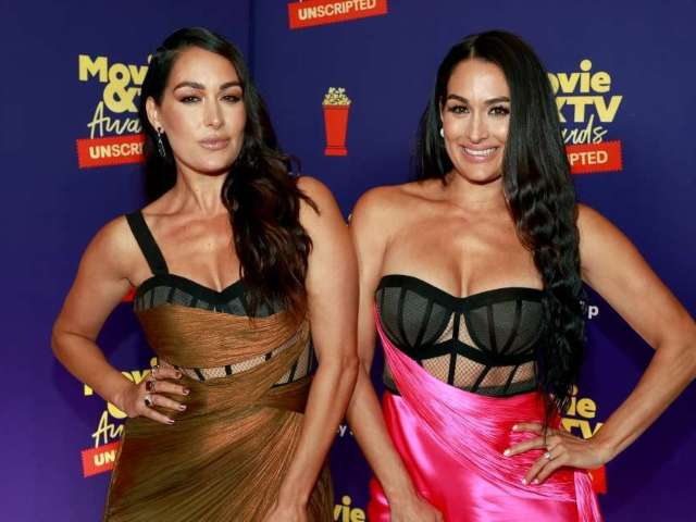 Nikki and Brie Bella Reveal Major Update on Their Return to WWE
