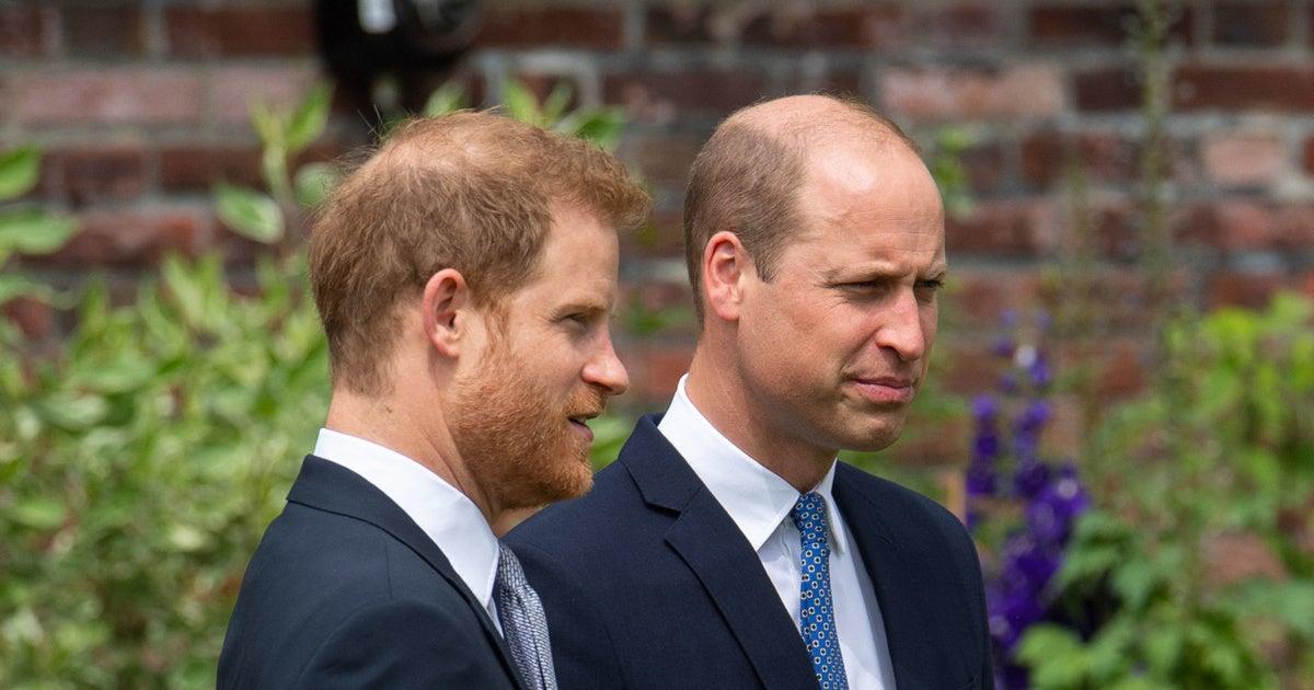 british-royal-family-prince-harry-prince-william