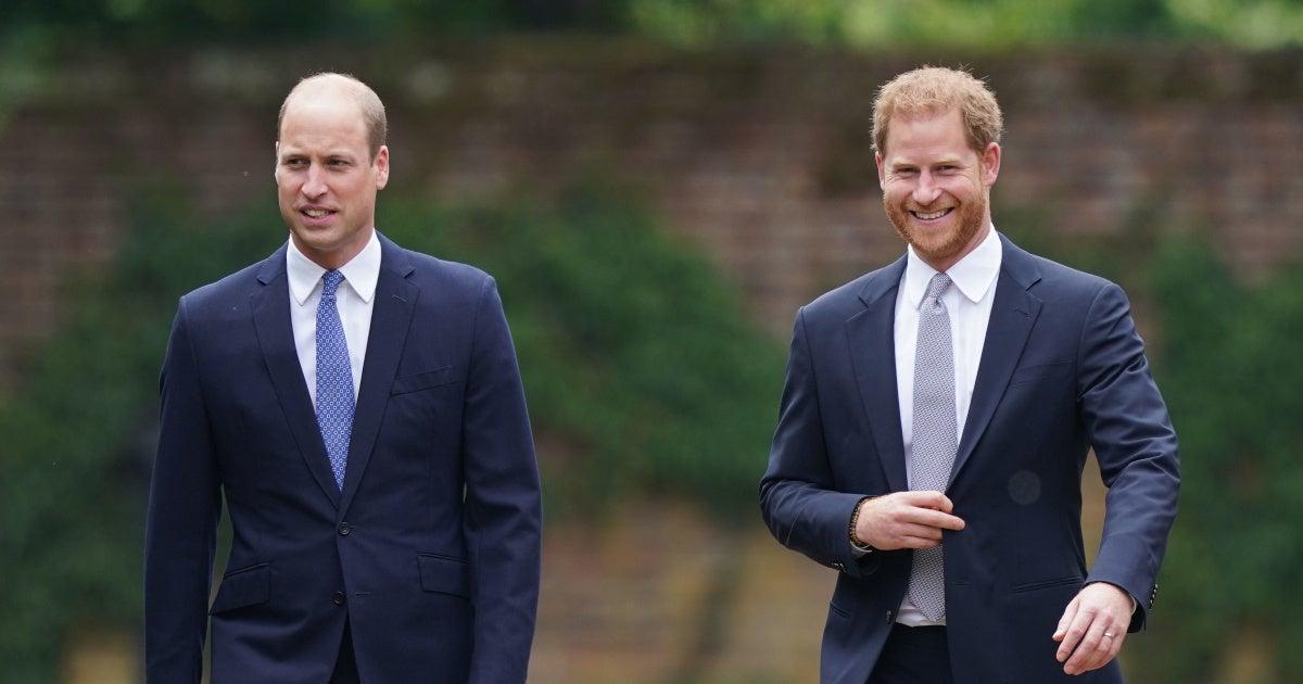 british-royal-family-prince-william-prince-harry