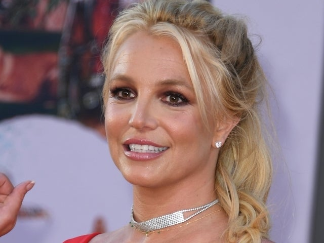 Britney Spears Reportedly Called 911 After Her Dogs Were Taken From Her House