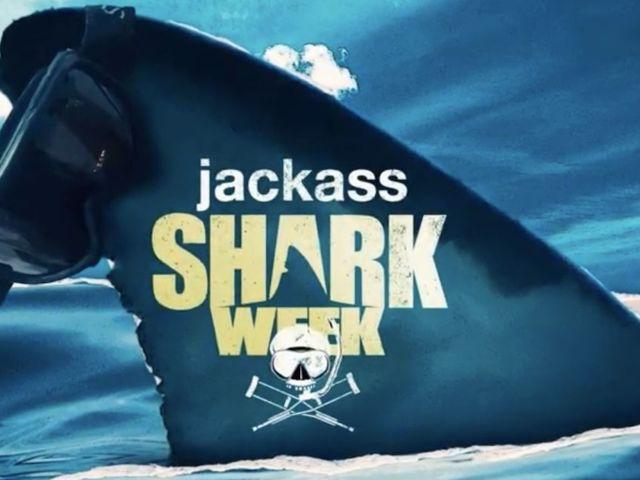 'Jackass' Star Suffers Shark Bite While Filming Wakeboard Stunt