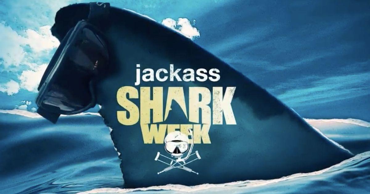 jackass-shark-week-special-youtube