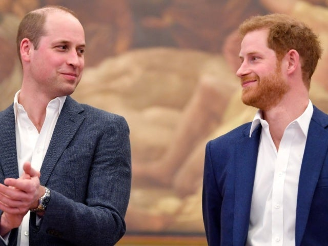 Will Princes Harry and William Put Differences Aside for Princess Diana Statue Unveiling?