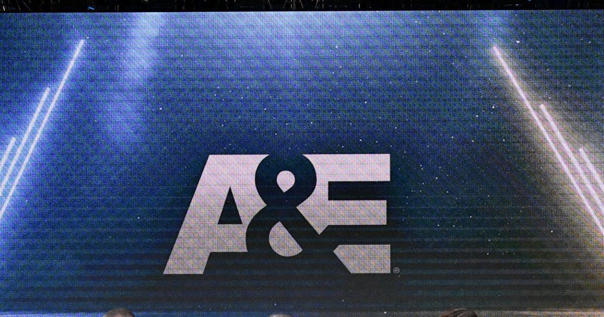 a-e-network-logo