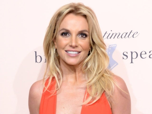Britney Spears Reportedly 'Thrilled' After Reunion With Missing Dogs